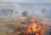 گردشگران؛ عامل آتش سوزی ۹۳ هکتار از عرصه های طبیعی شمال استان/ ۱۵۰۴؛ آماده دریافت گزارشات آتش سوزی
