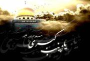 حضرت زینب(س) با شرایط همراه بود/ در میدان صبر و استقامت بهترین عمل را  باید انجام دهیم